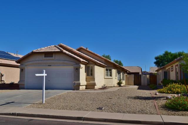 10638 W Mohawk Lane, Peoria, AZ 85382 (MLS #5784889) :: My Home Group