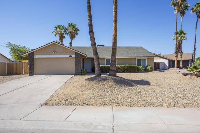 5230 E Beck Lane, Scottsdale, AZ 85254 (MLS #5784896) :: The Pete Dijkstra Team
