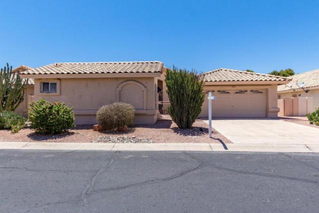 17414 N Lonesome Dove Trail, Surprise, AZ 85374 (MLS #5784899) :: Desert Home Premier