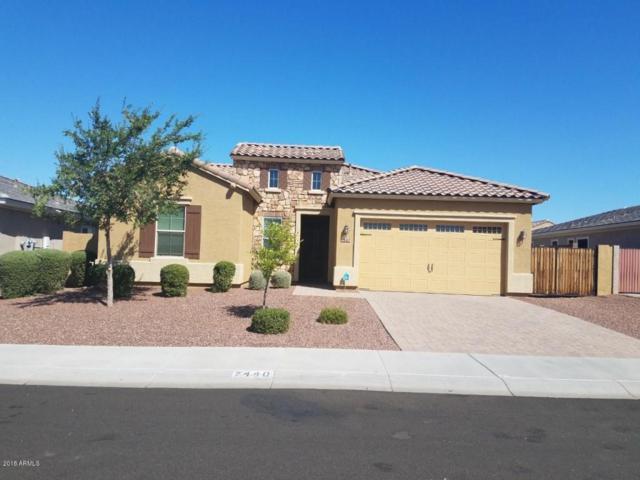 7440 W Remuda Drive, Peoria, AZ 85383 (MLS #5784912) :: My Home Group