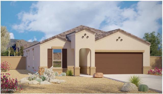 29762 N 120TH Lane, Peoria, AZ 85383 (MLS #5784923) :: My Home Group