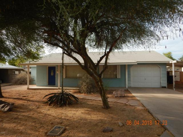 536 W 17TH Place, Tempe, AZ 85281 (MLS #5784926) :: My Home Group