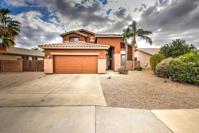 9237 W Potter Drive, Peoria, AZ 85382 (MLS #5784968) :: My Home Group