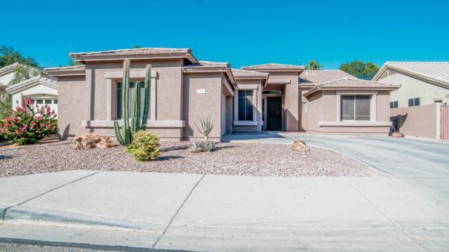3947 W Range Mule Drive, Phoenix, AZ 85083 (MLS #5784990) :: The Bill and Cindy Flowers Team