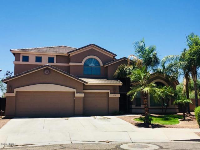 13651 W Boca Raton Road, Surprise, AZ 85379 (MLS #5784992) :: The Bill and Cindy Flowers Team