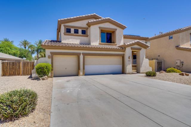 14634 W Avalon Drive, Goodyear, AZ 85395 (MLS #5785090) :: Occasio Realty