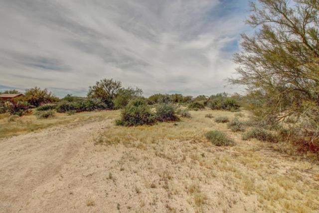 30120 N 163RD Place, Scottsdale, AZ 85262 (MLS #5785105) :: Desert Home Premier