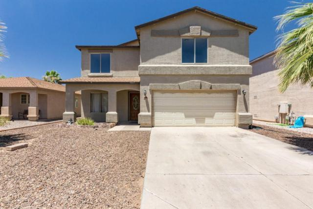 1036 E Denim Trail, San Tan Valley, AZ 85143 (MLS #5785241) :: Keller Williams Realty Phoenix