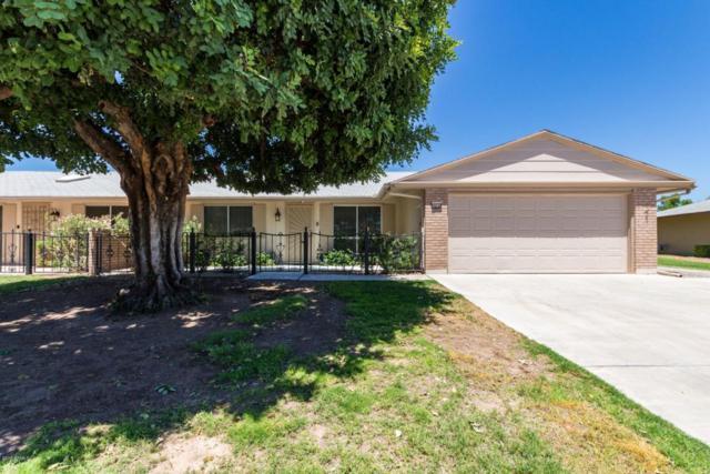 10114 W Royal Oak Road, Sun City, AZ 85351 (MLS #5785310) :: Riddle Realty