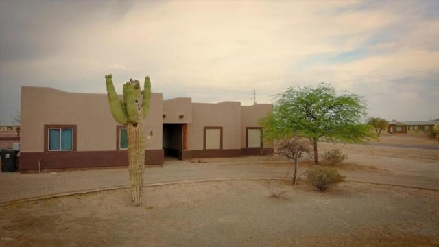 12006 S 207TH Drive, Buckeye, AZ 85326 (MLS #5785356) :: The Jesse Herfel Real Estate Group