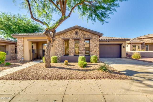 1916 E Latona Road, Phoenix, AZ 85042 (MLS #5785454) :: The Jesse Herfel Real Estate Group
