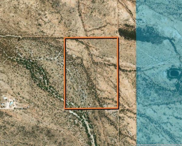 0 N Willy Road, Florence, AZ 85132 (MLS #5785481) :: Brett Tanner Home Selling Team