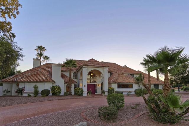 10191 E Jenan Drive, Scottsdale, AZ 85260 (MLS #5785649) :: Santizo Realty Group
