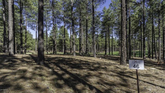 3455 W Strawberry Roan, Flagstaff, AZ 86005 (MLS #5785666) :: Team Wilson Real Estate