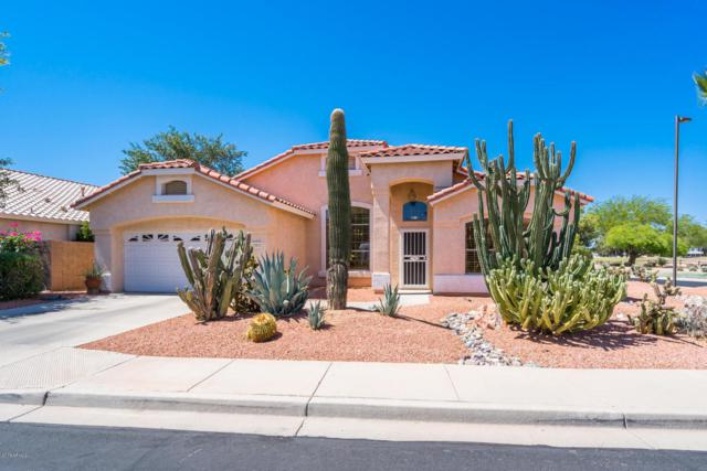 17612 W Weatherby Drive, Surprise, AZ 85374 (MLS #5785681) :: Desert Home Premier