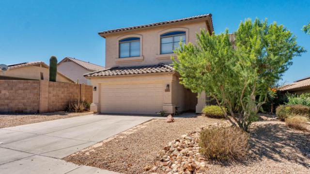 6327 W Saddlehorn Road, Phoenix, AZ 85083 (MLS #5785683) :: Occasio Realty