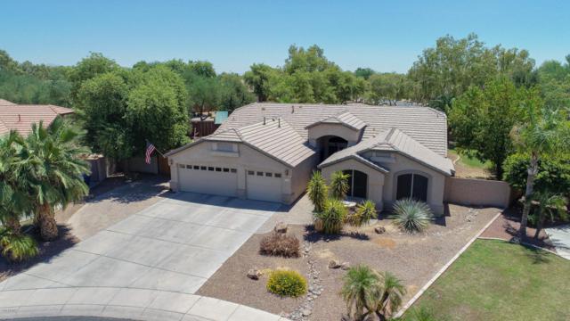 2779 S Birch Street, Gilbert, AZ 85295 (MLS #5785747) :: Yost Realty Group at RE/MAX Casa Grande