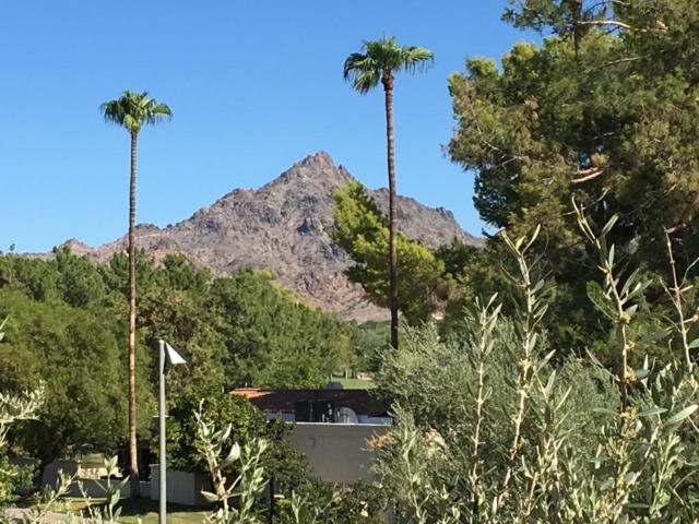 5132 N 31ST Way #128, Phoenix, AZ 85016 (MLS #5785898) :: Arizona 1 Real Estate Team