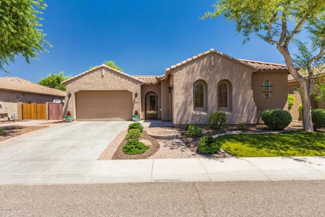 5606 W Desperado Way, Phoenix, AZ 85083 (MLS #5785977) :: Riddle Realty