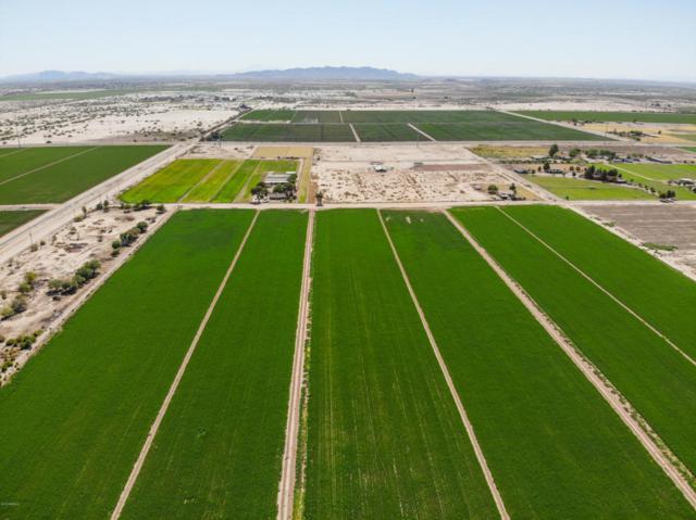 668 E Arica Road, Eloy, AZ 85131 (MLS #5786005) :: Yost Realty Group at RE/MAX Casa Grande