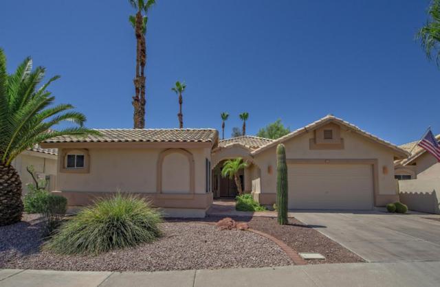 14337 W Shawnee Trail, Surprise, AZ 85374 (MLS #5786057) :: Desert Home Premier