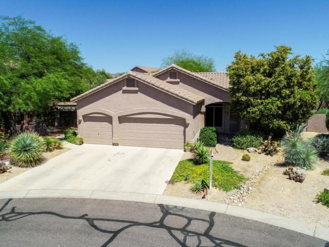 2909 N Avoca Circle, Mesa, AZ 85207 (MLS #5786078) :: Kepple Real Estate Group