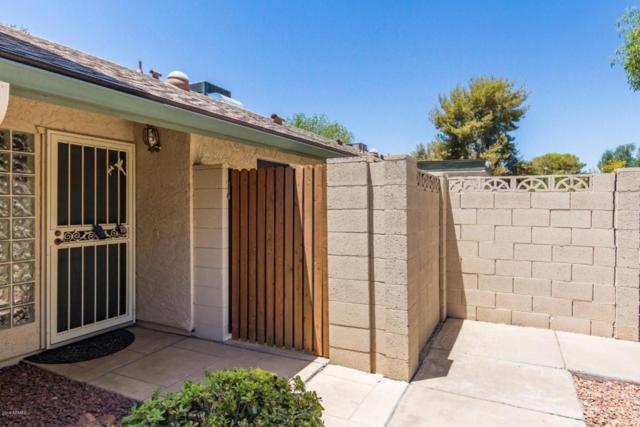 18037 N 45TH Avenue, Glendale, AZ 85308 (MLS #5786213) :: Brent & Brenda Team