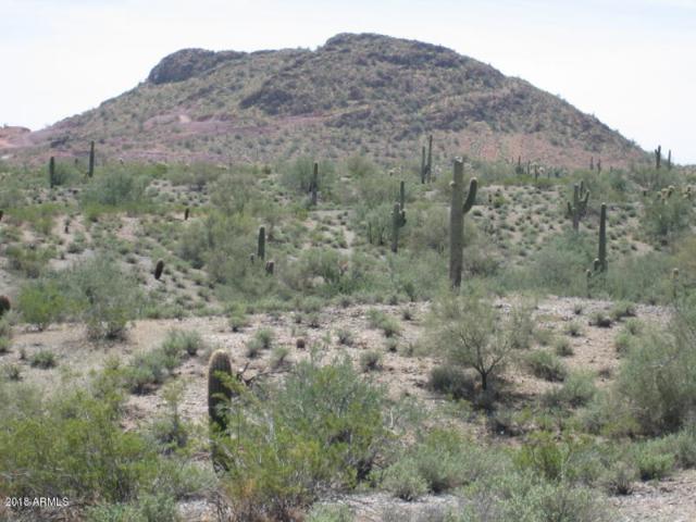 0 W Rhea Road, Queen Creek, AZ 85142 (MLS #5786235) :: Yost Realty Group at RE/MAX Casa Grande