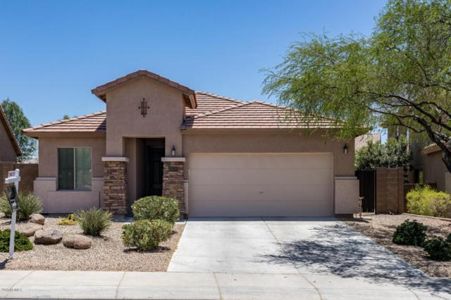 7343 W Desert Mirage Drive, Peoria, AZ 85383 (MLS #5786269) :: The Laughton Team
