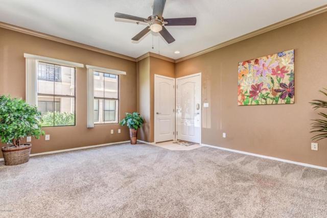 295 N Rural Road #167, Chandler, AZ 85226 (MLS #5786280) :: The Daniel Montez Real Estate Group