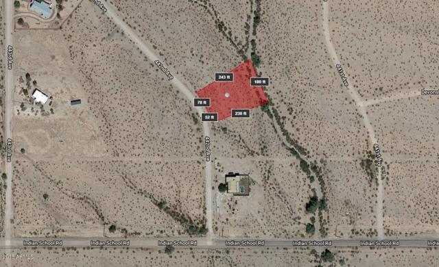 4131 N 442nd Avenue, Tonopah, AZ 85354 (MLS #5786458) :: The Daniel Montez Real Estate Group