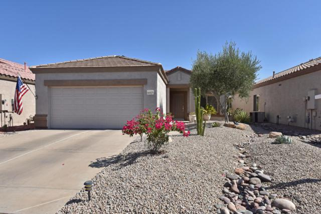 16527 W Rock Springs Lane, Surprise, AZ 85374 (MLS #5786465) :: Arizona Best Real Estate