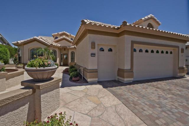 16065 W Windsor Avenue, Goodyear, AZ 85395 (MLS #5786977) :: Kortright Group - West USA Realty