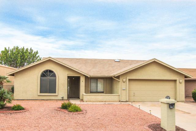 9335 E Olive Lane N, Sun Lakes, AZ 85248 (MLS #5787032) :: The Jesse Herfel Real Estate Group