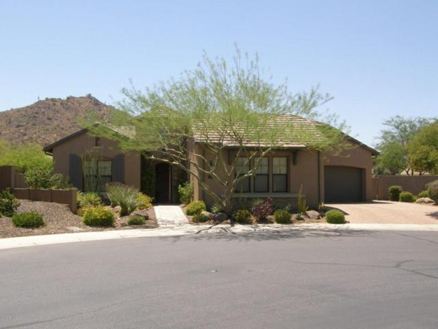 28602 N 67TH Drive, Peoria, AZ 85383 (MLS #5787222) :: The Laughton Team