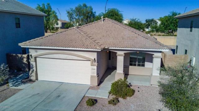 1505 S 123RD Drive, Avondale, AZ 85323 (MLS #5787232) :: Occasio Realty