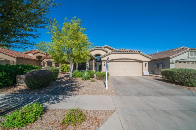 20906 N 36TH Place, Phoenix, AZ 85050 (MLS #5787312) :: The Jesse Herfel Real Estate Group