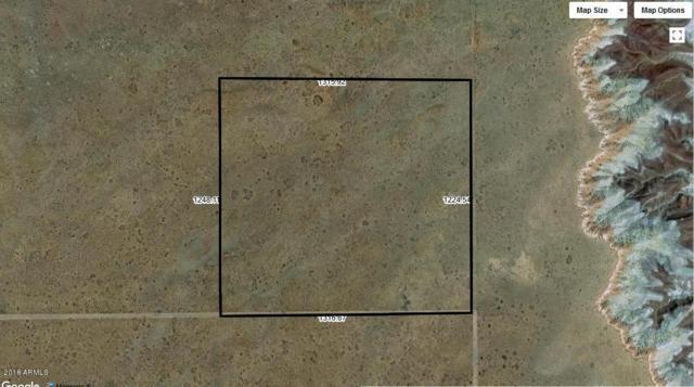 10456010 N Unnamed Road, Holbrook, AZ 86025 (MLS #5787416) :: Revelation Real Estate