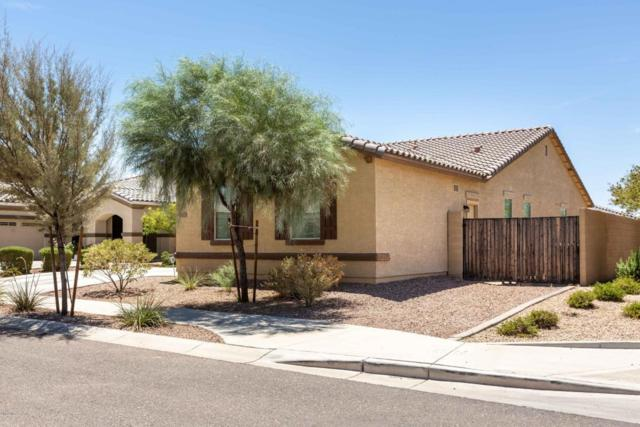 17023 W Shiloh Avenue, Goodyear, AZ 85338 (MLS #5787491) :: The Jesse Herfel Real Estate Group