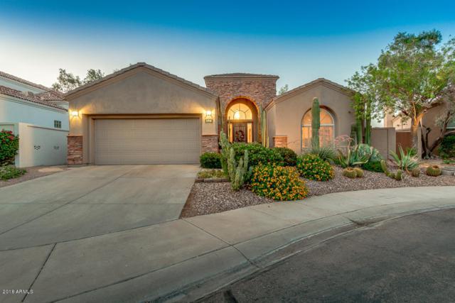 11946 E Del Timbre Drive, Scottsdale, AZ 85259 (MLS #5787759) :: Occasio Realty
