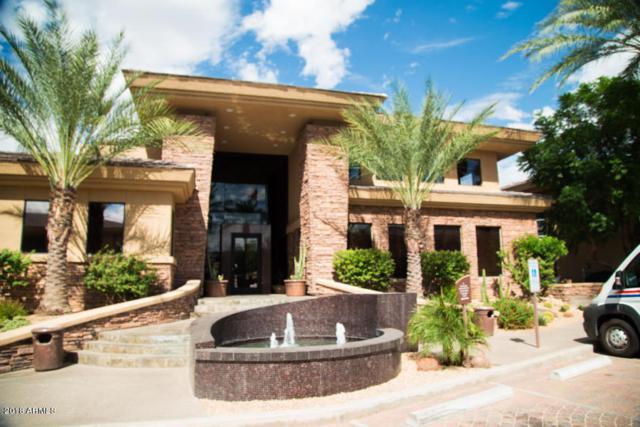 6900 E Princess Drive #1177, Phoenix, AZ 85054 (MLS #5787873) :: The Daniel Montez Real Estate Group