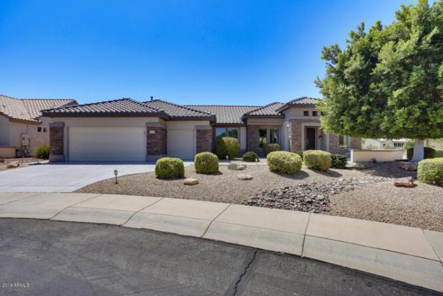 20163 N Mariposa Way, Surprise, AZ 85374 (MLS #5787904) :: Arizona Best Real Estate