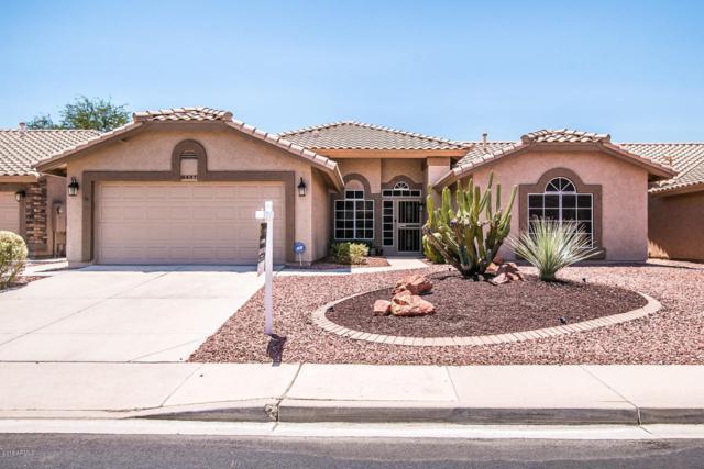 8437 W Mcrae Way, Peoria, AZ 85382 (MLS #5787932) :: Desert Home Premier