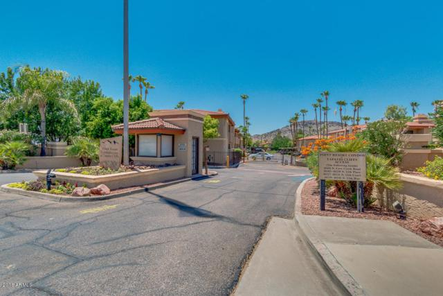 10410 N Cave Creek Road #1213, Phoenix, AZ 85020 (MLS #5788099) :: The Daniel Montez Real Estate Group