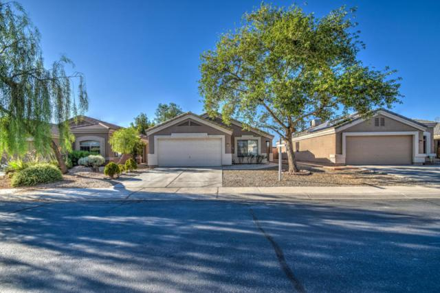 12532 W Mauna Loa Lane, El Mirage, AZ 85335 (MLS #5788283) :: Gilbert Arizona Realty