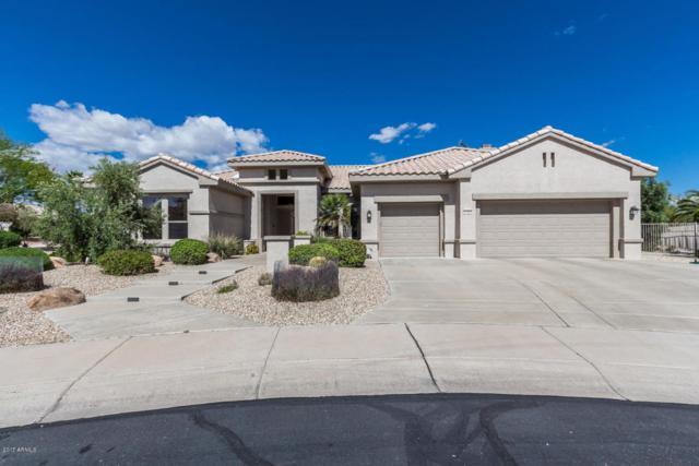 17821 N Covina Court, Surprise, AZ 85374 (MLS #5788315) :: Phoenix Property Group