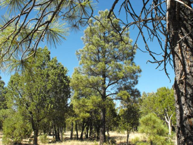 6479 Whispering Pine Drive, Happy Jack, AZ 86024 (MLS #5788340) :: The Garcia Group @ My Home Group