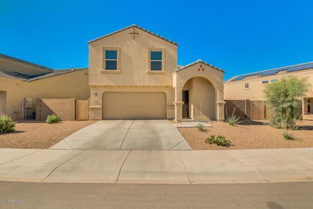 23992 N Brittlebush Way, Florence, AZ 85132 (MLS #5788434) :: Kepple Real Estate Group