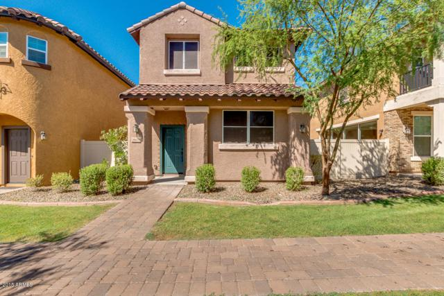 29075 N 125th Avenue, Peoria, AZ 85383 (MLS #5788537) :: My Home Group