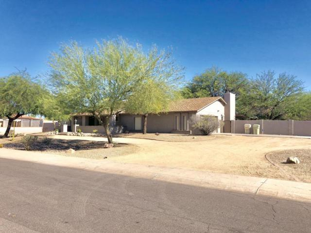6315 W Bloomfield Road, Glendale, AZ 85304 (MLS #5788590) :: The Everest Team at My Home Group